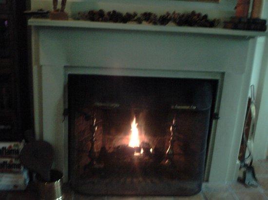 Brewster By The Sea Inn: Fireplace in Breakfast Area