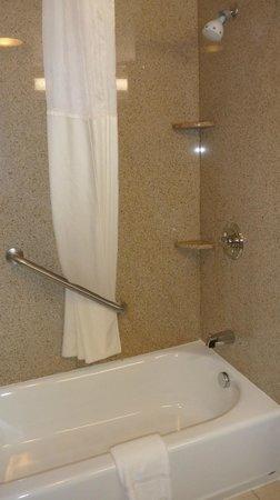 Comfort Inn Cheektowaga : Big, comfy shower