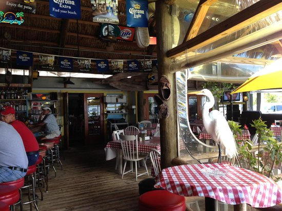 Conchy Joe's Seafood: Uninvited diner