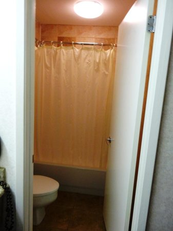 BEST WESTERN Irving Inn & Suites at DFW Airport: Baño