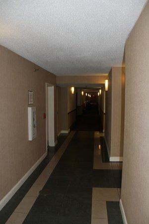 La Quinta Inn & Suites Virginia Beach: The hallways