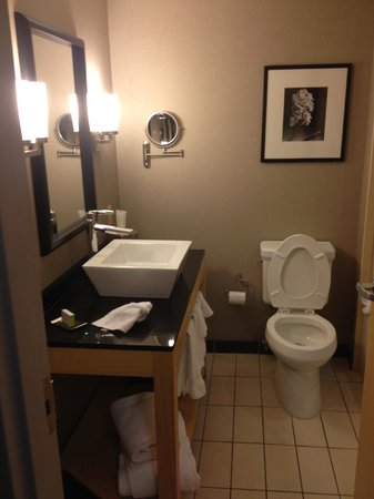Bathroom Sinks Baton Rouge lobby - picture of doubletreehilton hotel baton rouge, baton