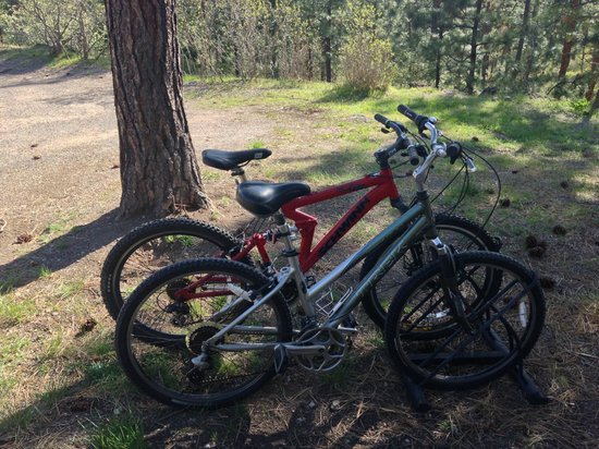 Swan Hill Bed & Breakfast: Bikes are Available for Guest Use