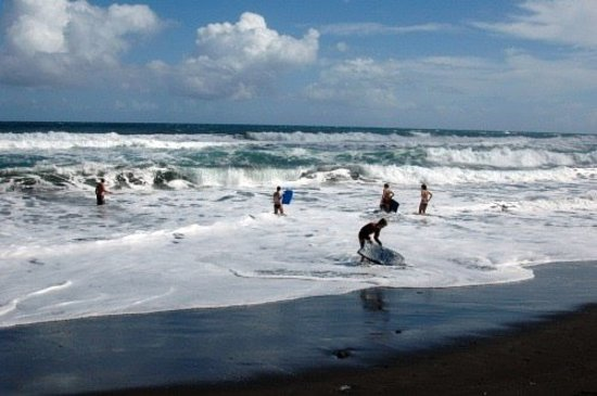Whanganui Seaside Holiday Park : Great Swimming