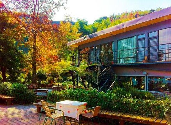Incredible, incredible hospitality - Review of Alishan Lauya Homestay
