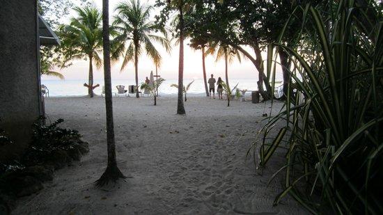 Nirvana on the Beach : The beach