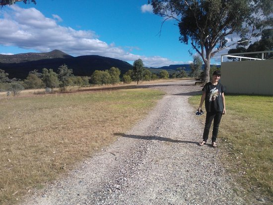 Craigdon Accommodation and Functions : Homestead grounds