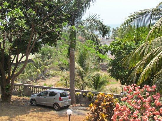 Hotel Sai Palace: Trees