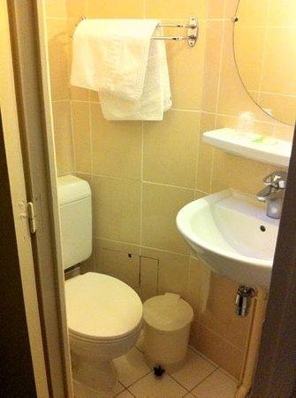 Hotel de la Place des Alpes: wc