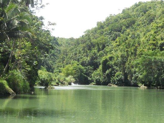 Busay Falls Picture Of Loboc River Cruise Loboc Tripadvisor