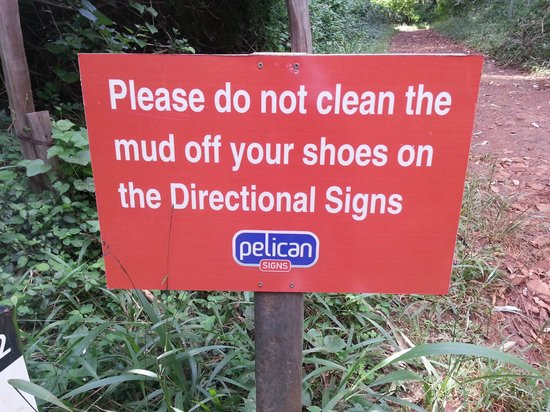 Karura Forest: Funny!