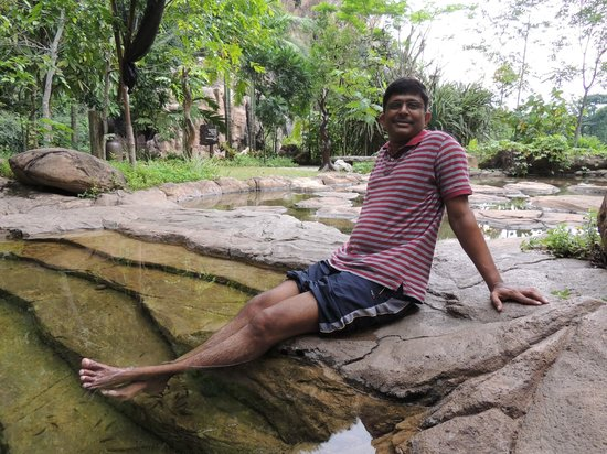 The Banjaran Hotsprings Retreat: fish spa