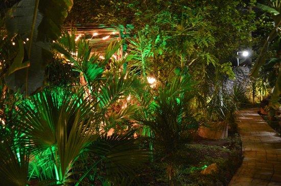 Casa Tia Micha: giardino