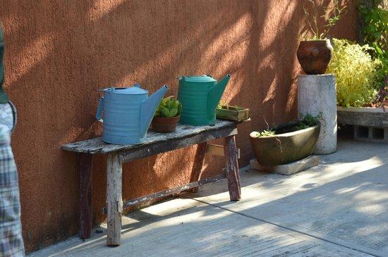 Casa Tía Micha: dettagli giardino