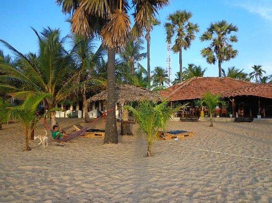 Rocco's Hotel : rocco's beach front