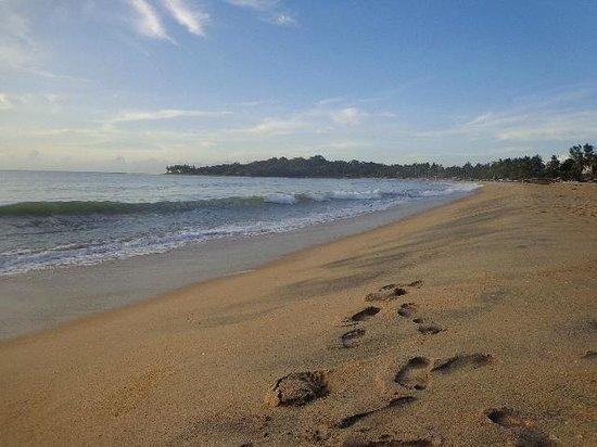 Rocco's Hotel : beach