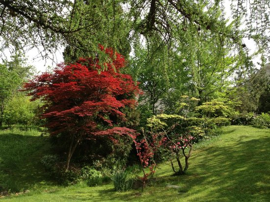 Budapest Zoo & Botanical Garden: The Japanese Garden