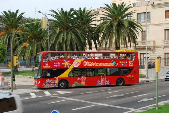 City Sightseeing Las Palmas de Gran Canaria: palma citysightseeing