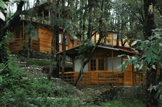 Shoghi, India: Find your private moment with nature