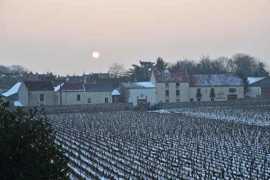 Burgundia, Francja: Les Deux Chevres Hotel, Gevrey Chambertin