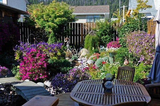 Austrian Haven Bed and Breakfast: Einmalige Blumenpracht im Garten