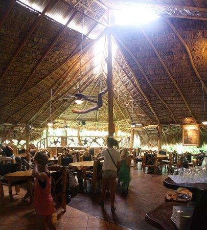 Que Rico Papito Restaurant : Den flotte restaurant