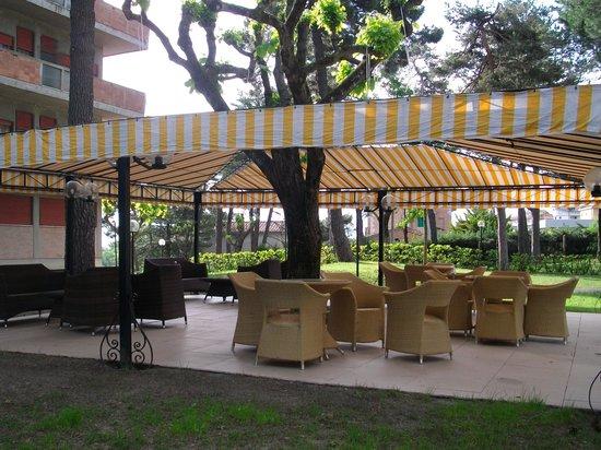 Hotel Michelangelo: Nice grounds