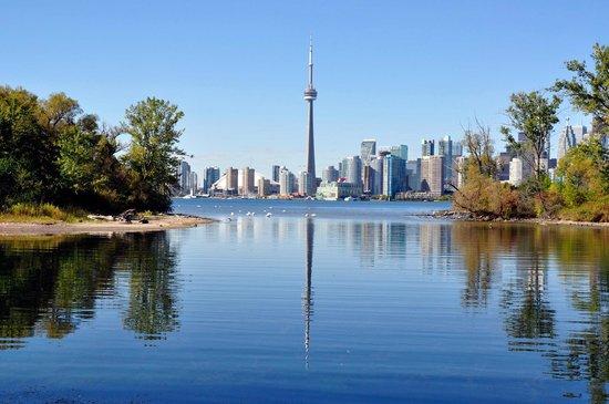 Toronto Island Things To Do Winter