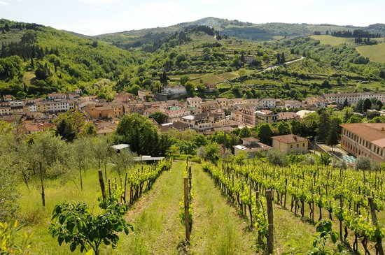 Podere Campriano: A view from the attached vineyard onto the town of Greve in Chianti