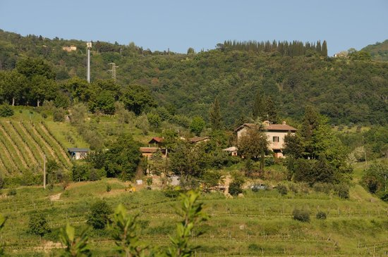 Podere Campriano: A view of the hotel property from a distant hill