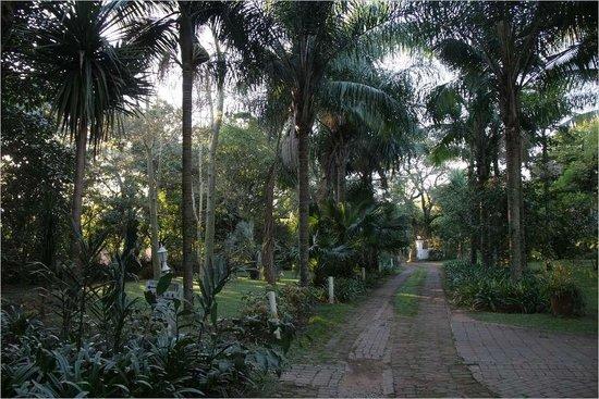 Igwala gwala: Entrance I Gwala Lodge