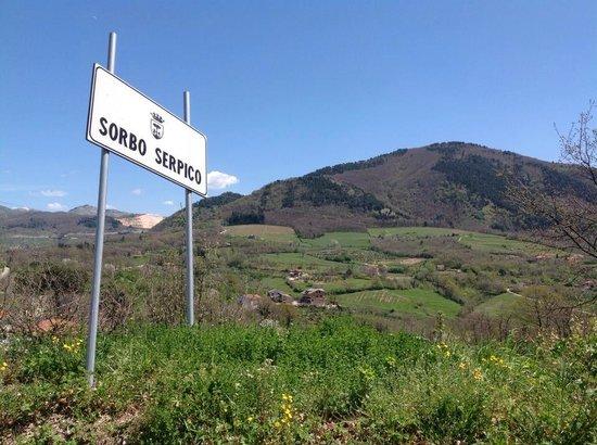 Azienda vinicola Feudi di San Gregorio