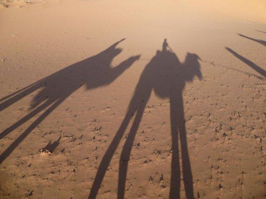 Riad Armelle: Sahara camel trip