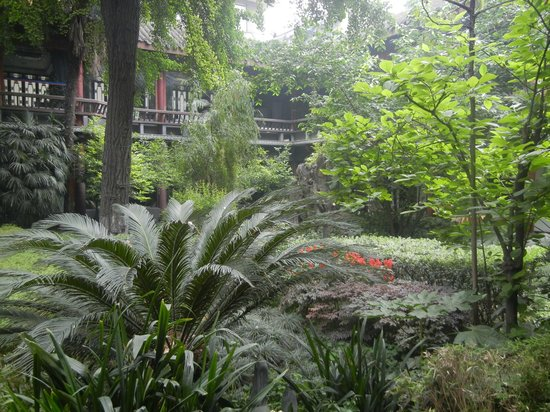 Sam's Guesthouse Chengdu Youth Hostel: Courtyard Garden
