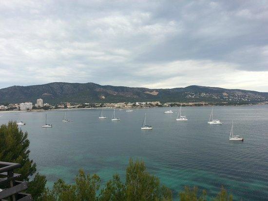 Alua Palmanova Bay (ex Intertur): .