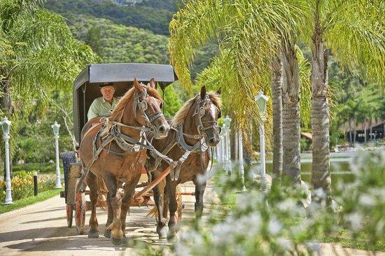 Fazzenda Park Hotel: Passeios de Charrete