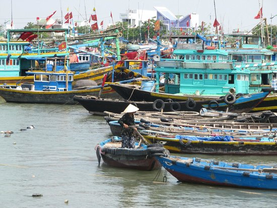 Doi Duong Hotel : The colourful Phan Thiet fishing harbour
