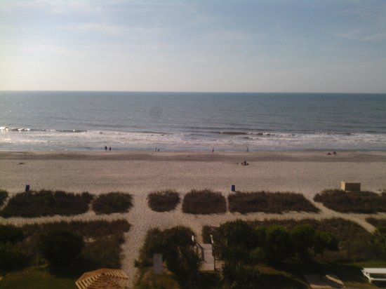 Palmetto Shores Oceanfront: view of the beach from the fourth floor