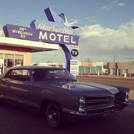 Blue Swallow Motel: Blue Swallow 2013