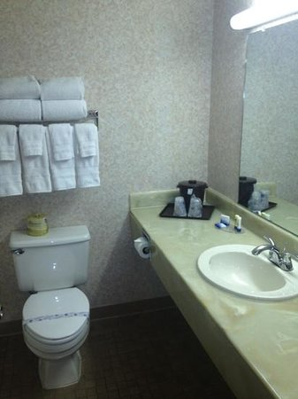 BEST WESTERN Royal Plaza Hotel & Trade Center: small bathroom...