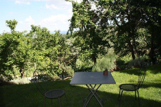 Villa Cicolina : El jardín de nuestra habitación