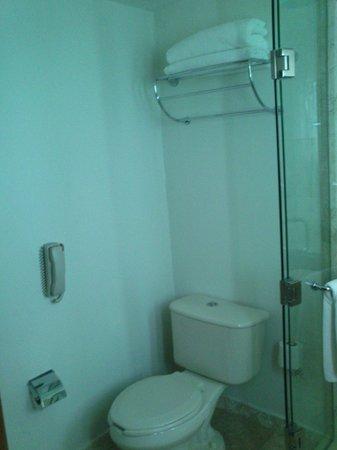Hyatt Regency Villahermosa: wc