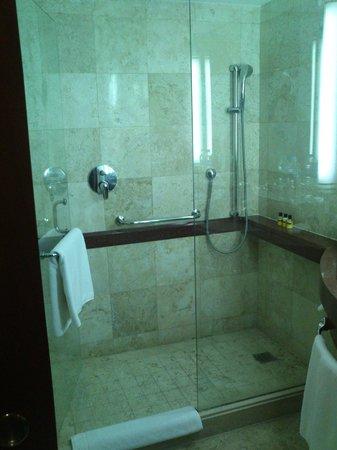 Hyatt Regency Villahermosa: doccia
