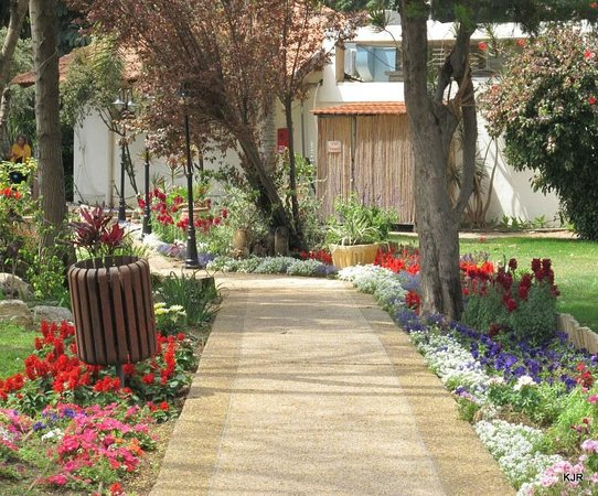 Kfar Maccabiah Hotel & Suites: Walk area around the grounds