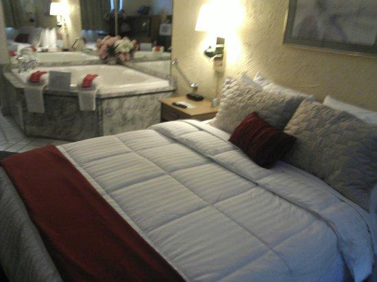 Motel 6 Appleton: Queen jacuzzi suite