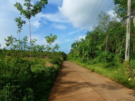 Koh Mak Resort: typical Koh Mak road