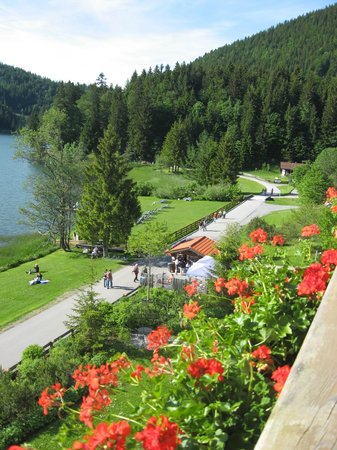 Arabella Alpenhotel am Spitzingsee : that's the view from your room