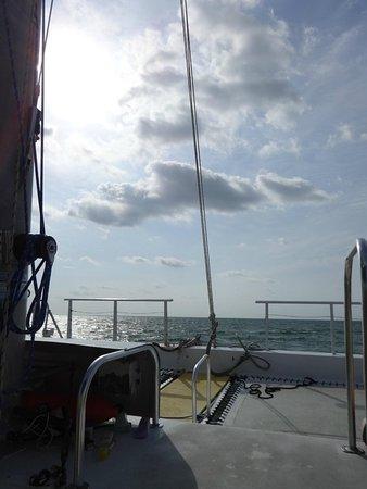 Reef Roamer Snorkel: 5/14