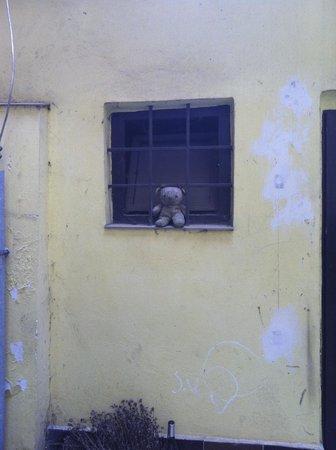Hostel Lipa : avlu