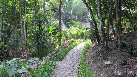 Table Rock Jungle Lodge: walkway to our cabana